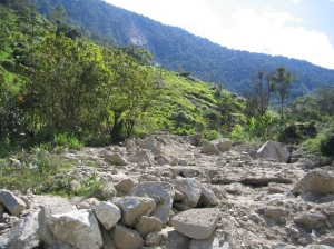 Deforestation is causing severe problems in southern Ecuador; landslides are common occurrences