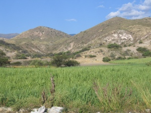 Land bought by FAPECAFES in Catamayo where they plan to build their own mill