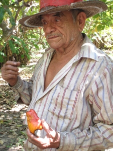 Leopoldo Rafael Abrego, on his farm in El Naranjo
