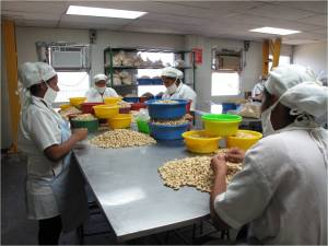 The women then sort the nuts into wholes, halves, and pieces.