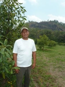 Alfredo, a member of the PRAGOR cooperative, on his families beautiful farm in Tingambato. He and his family converted to organic 10 years ago, a revolutionary move for the time!