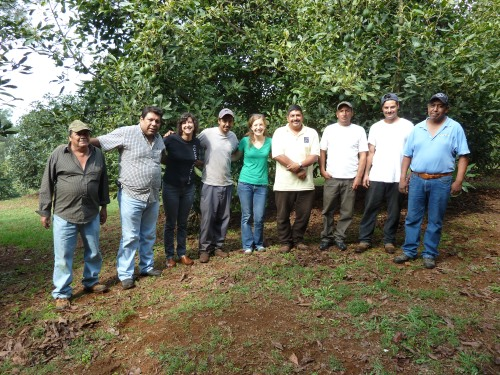 Members of PRAGOR cooperative welcome the Equal Exchange team to an avocado huerto in Tingambato, Mexico. In the photo are: Jose Luis, Salvador (GM of PRAGOR), Nicole Vitello (EE), Jessica Jones-Hughes (EE), Rafael, Alfredo, Salvador, Ruben.